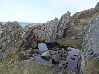 east-braes-frogs-rockpools-paulina
