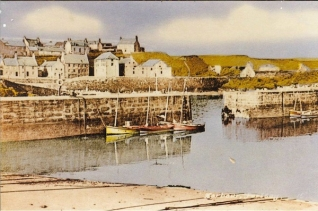 harbour-and-doonie
