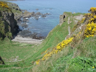 findlater-castle-paulina